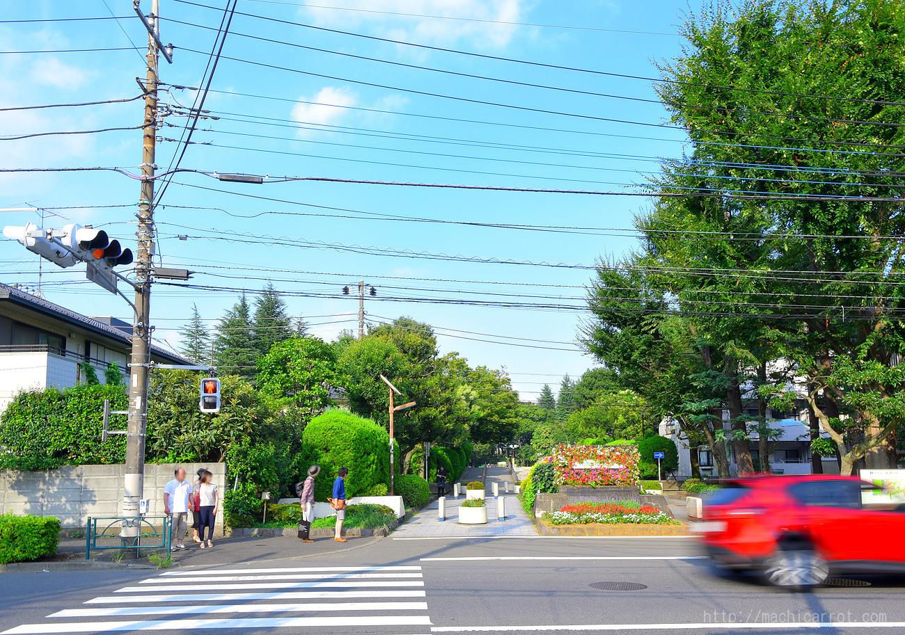 【ポケモン】世田谷公園へ行ってみた【GO】